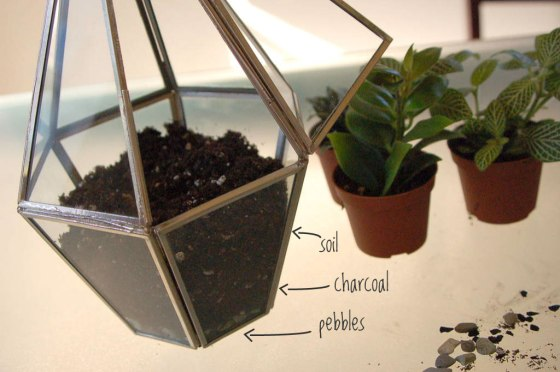 soil-levels