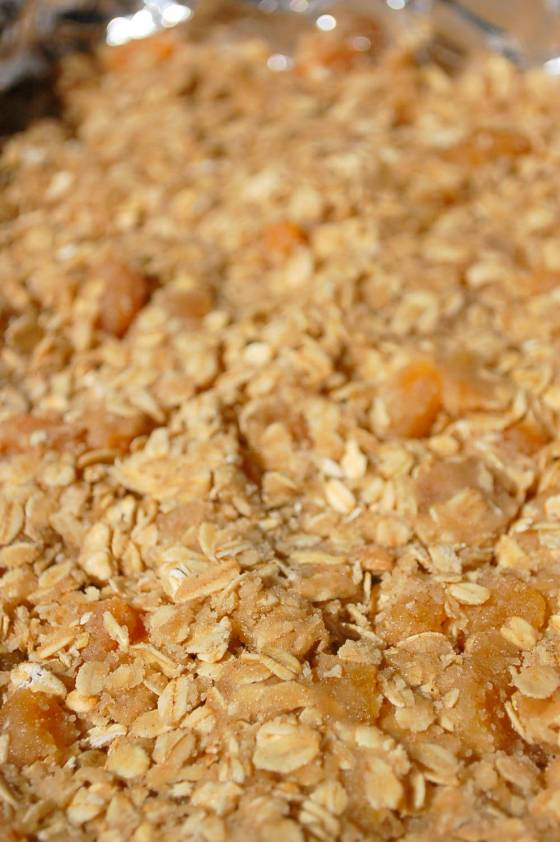 Apricots and Oatmeal