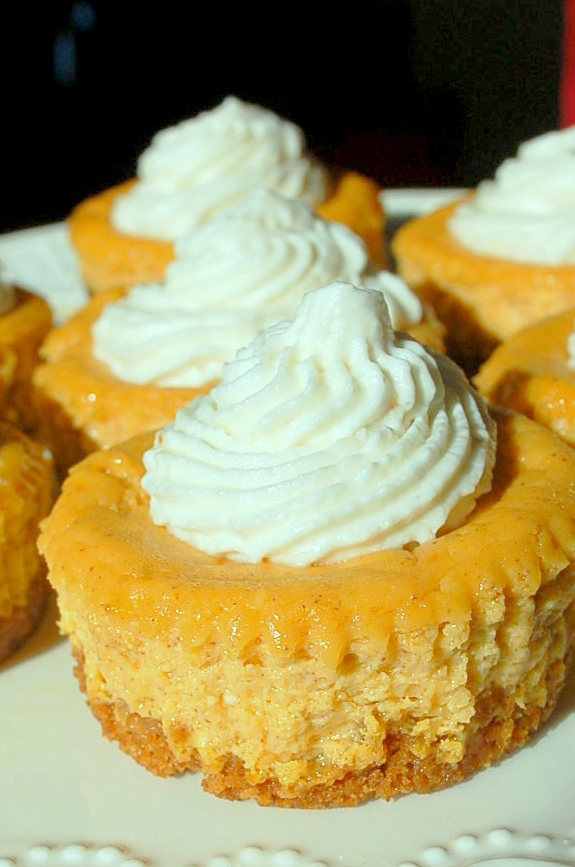 Pumpkin mini cheesecakes